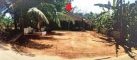 บ้านเดี่ยวหลุดจำนอง ธ.ธนาคารอาคารสงเคราะห์ นครศรีธรรมราช นาบอน นาบอน